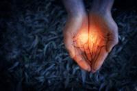 reiki vibrational healing hands image